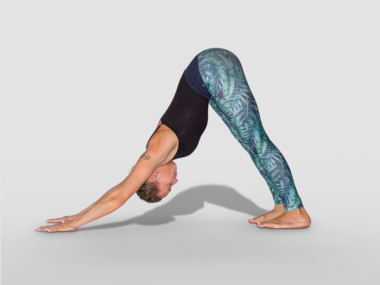 adho-mukha-svanasana or downward facing dog pose