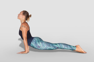 urdhva mukha svanasana or upward facing dog pose